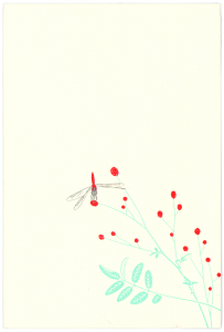 Libelle von Mikael